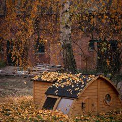 Herbstlaub Verwendung